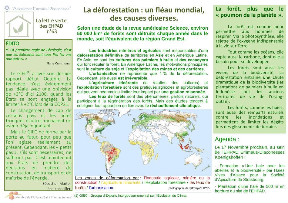 Déforestation