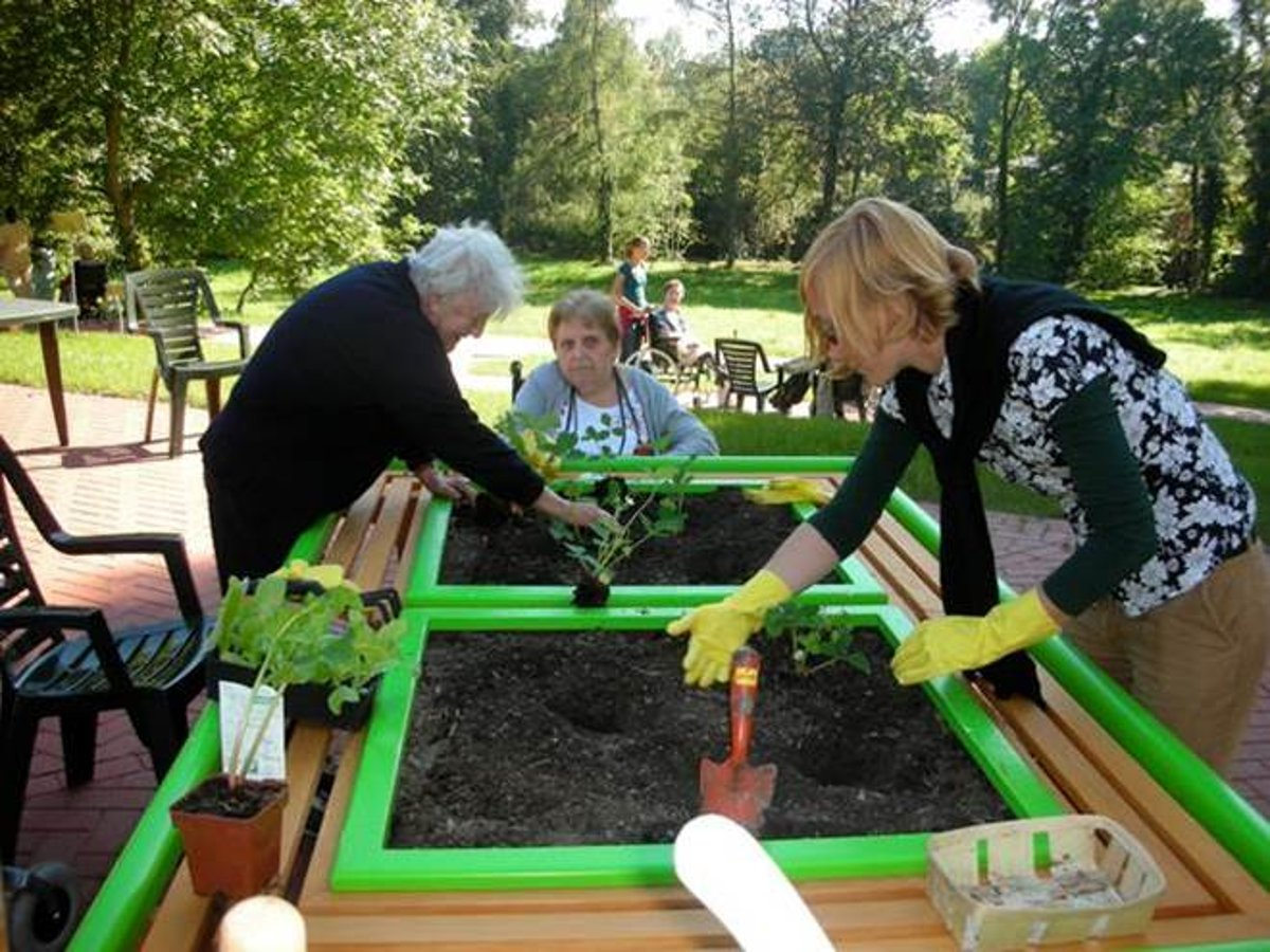 Ehpad Strasbourg Koenigshoffen jardinage