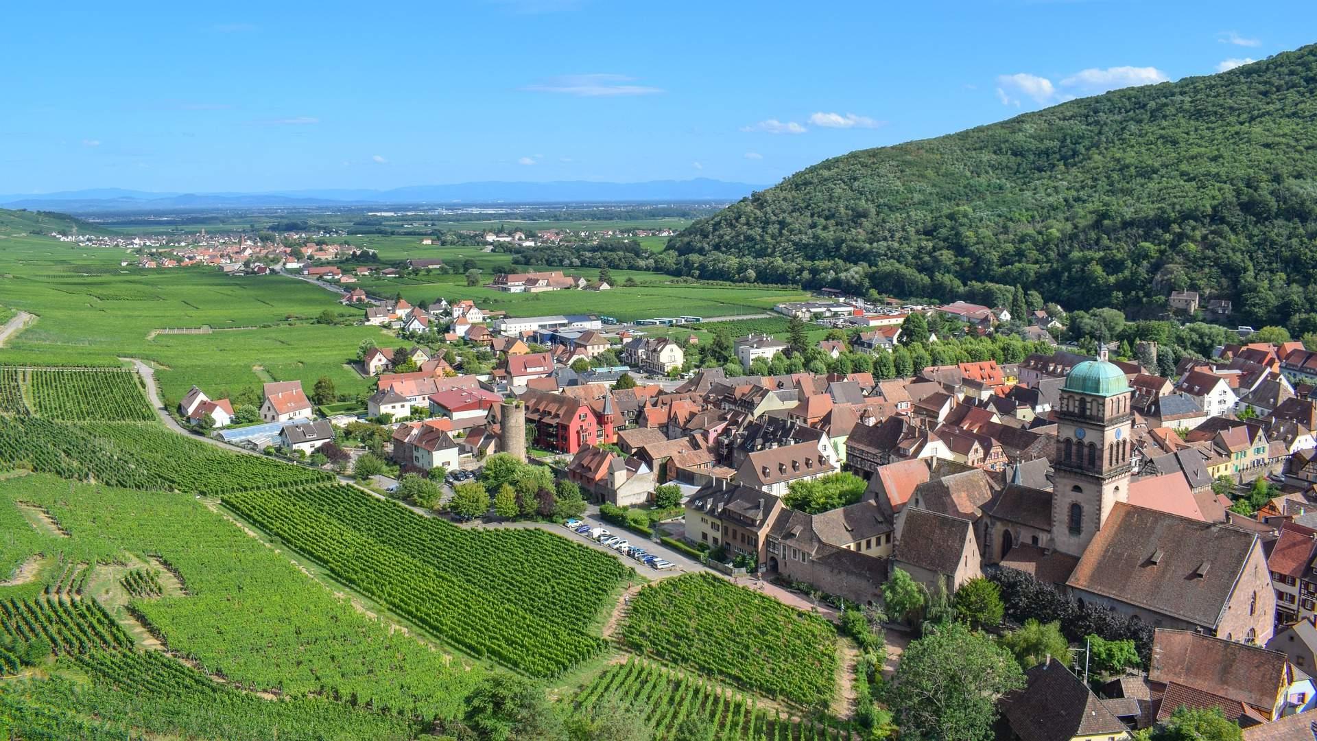 Réchauffement climatique Alsace