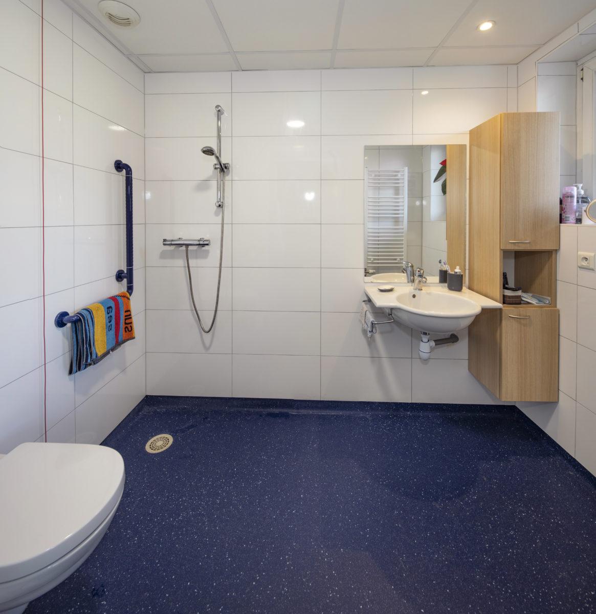 Ehpad Strasbourg Koenigshoffen salle de bain